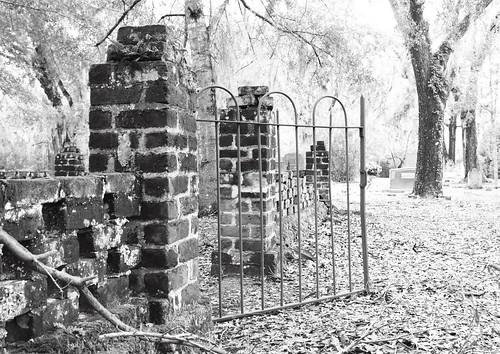 Brick Fence Iron Gate Green Moss Live Oak Cemetary