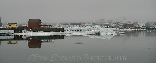 Bonavista in the Fog | by Tony Seaward