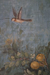 Roman fresco detail with bird and fruit, Villa of Livia, Prima Porta | by raggi di sole