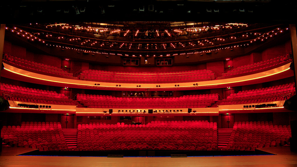 Image result for Muziektheater