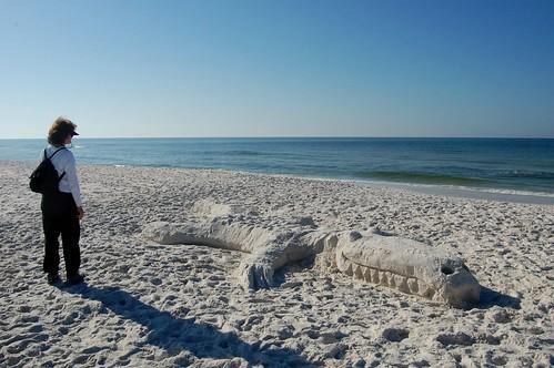 Grayton Beach Florida Rentals Sweet Magnolia