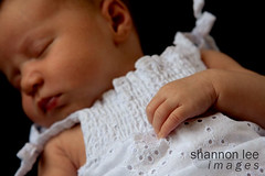 little hand | by shannon lee images