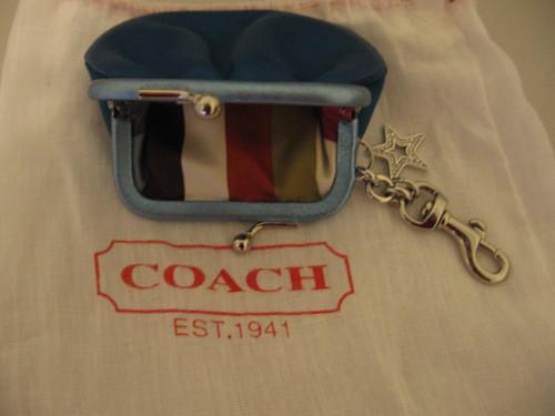 how to clean a satin coach purse