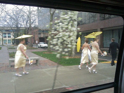 Random Wedding walking down the street | by J&NLee
