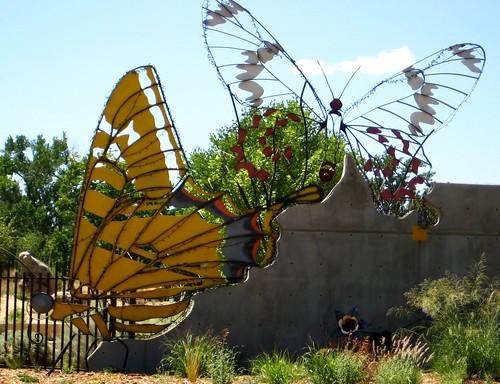 062 Grand Junction Co 003 39 Butterflies 39 Botanical G Flickr