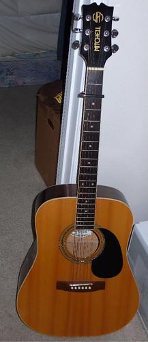 Acoustic Travel Guitar Case