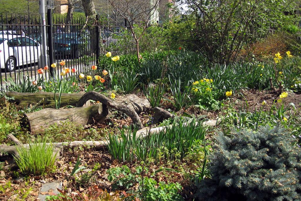 NYC - Brooklyn - Williamsburg: Green Dome Garden | Green Dom… | Flickr