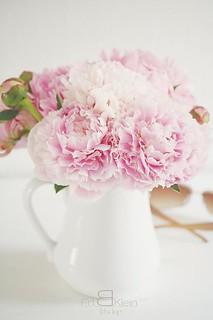 a bouquet of peonies frl klein flickr. Black Bedroom Furniture Sets. Home Design Ideas
