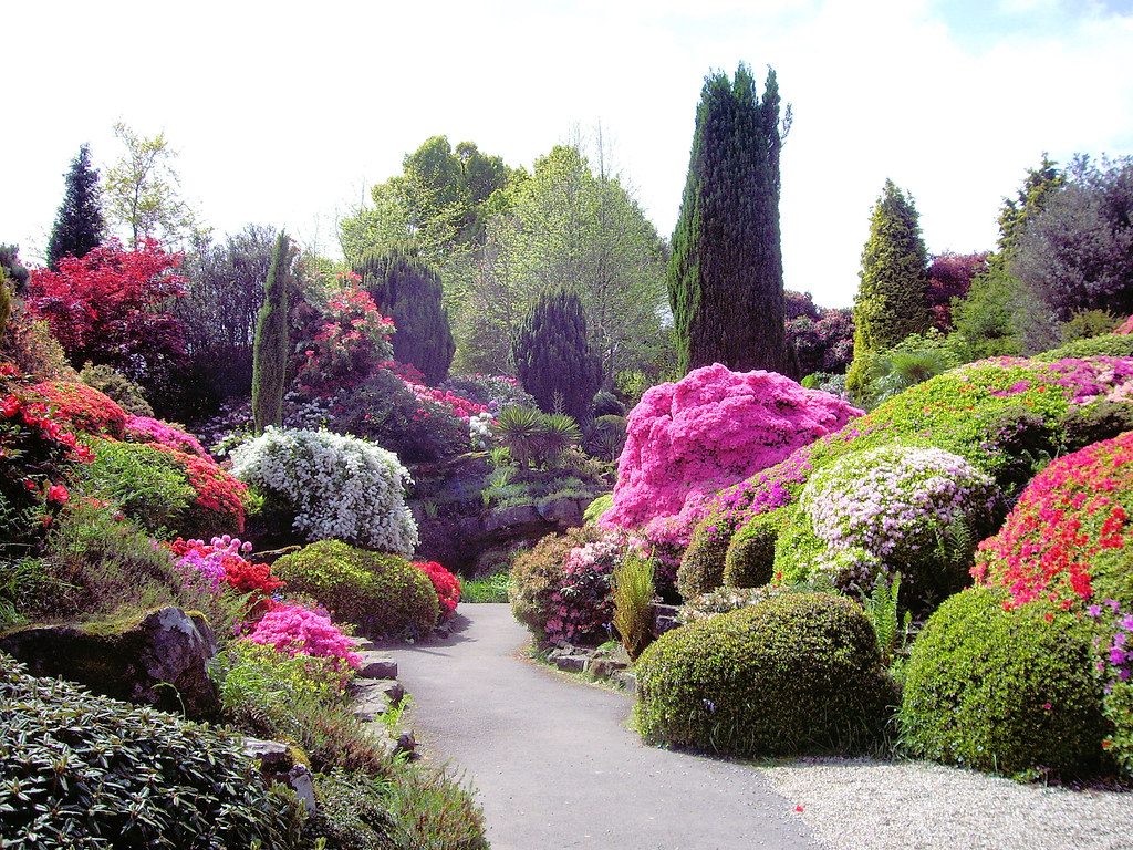 The Rock Garden, Leonardslee Gardens