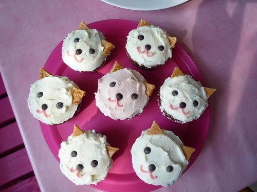 cat cupcakes because we're getting a cat today! | by servas ♡ gschaeft