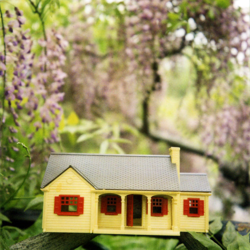 little house in the wisteria | by anniebee