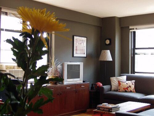 Real Homes Dark Green Gray Living Room Ralph Lauren Pai