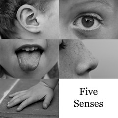 Five Senses | by TheNickster