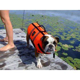 dog life jacket bulldog puppypfd flickr