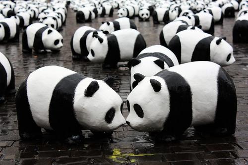 panda kiss 1600 pandas par wwf nantes 4 avril 2009 1 flickr. Black Bedroom Furniture Sets. Home Design Ideas