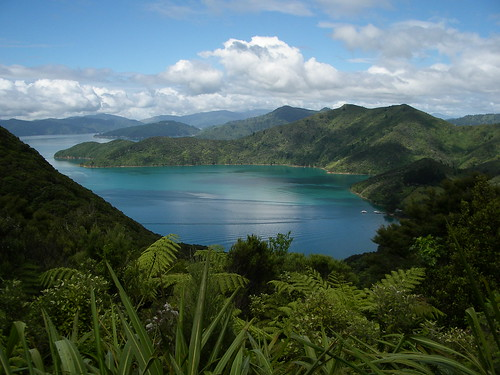 Queen Charlotte Track | by weldonwk