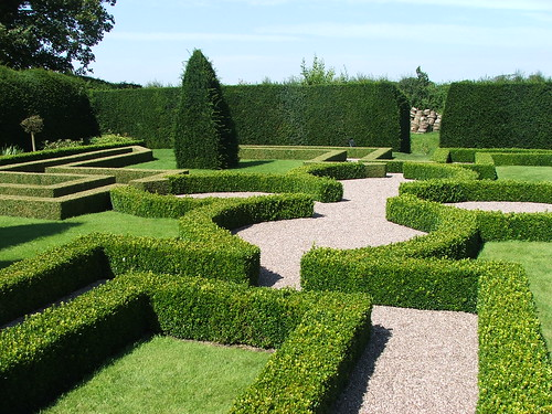 Knot garden little moreton hall during the 20th century for Tudor knot garden designs