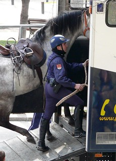 Caballeria Policia Nacional / National Police Cavalry | by Oscar in the middle