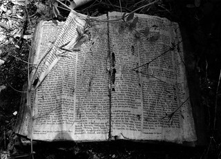 Into the Promised Land, Joshua 18, Abandoned Bible, White Oak Bayou, Houston, Texas 0420091320BW | by Patrick Feller