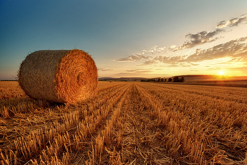 Bale Of Straw during sunset | by Philipp Klinger Photography