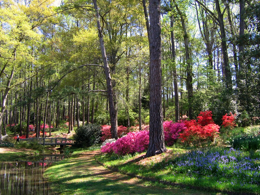 Early April in Georgias Callaway Gardens Best Viewed LARG Flickr