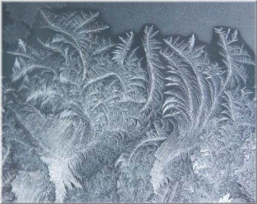 more window frost  b | by withrow