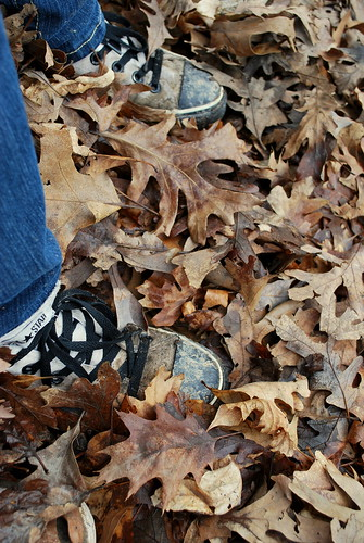 Dead Leaves and the Dirty Ground | by carissa's hull