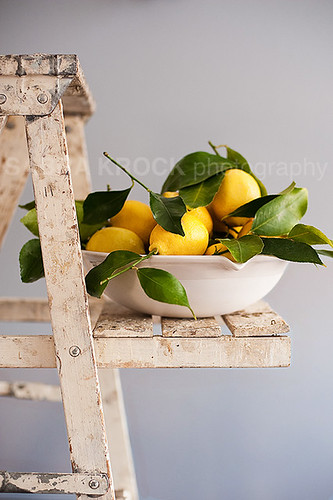 lemons and ladder v2 6337 | by skrockodile (www.cookbookcatchall.blogspot.com)
