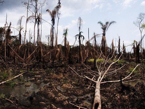 Niger Delta oil disaster | by Sosialistisk Ungdom - SU