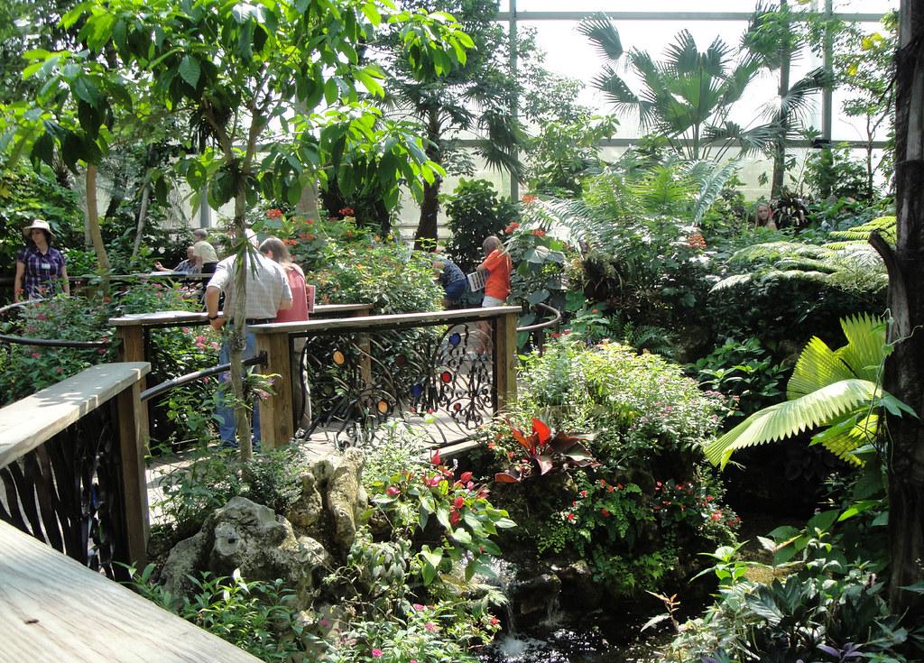 uf butterfly garden by shouder53 uf butterfly garden by shouder53 - Uf Butterfly Garden