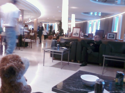 Meerkat hobnobing at the Admiral's Lounge at Charles De Gaule | by YiddishBlog