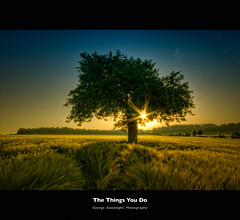 The things you do | by George Goodnight