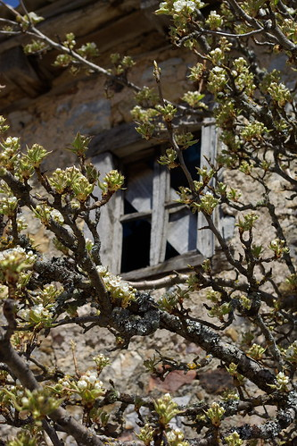 Window - Picos de Europa | by The Hungry Cyclist
