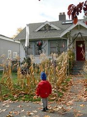 Halloween house and yard | by greenwalksblog