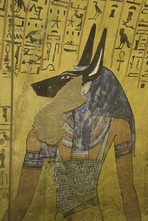 anubis 1 | by cosiscience