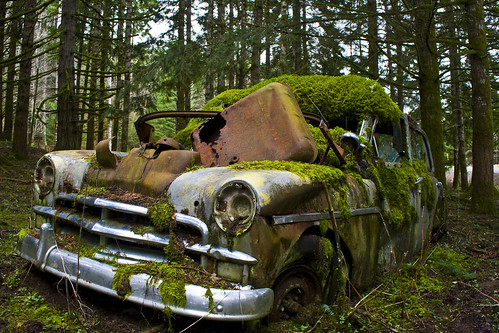 Mossy Green Plymouth | by pat-trick