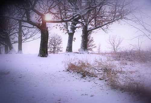 Winter dream | by James Jordan