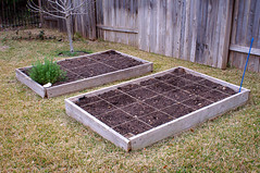 Divided Garden Beds | by barron