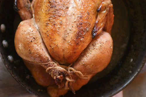 Thomas Keller roasted chicken | by shauna | glutenfreegirl