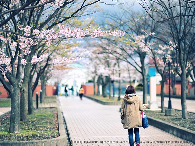 Campus life. © Glenn E Waters  (Explored). Over 7,000 visits to this photo.  Thank you. 弘前学院大学 Hirosaki Gakuin Daigaku.