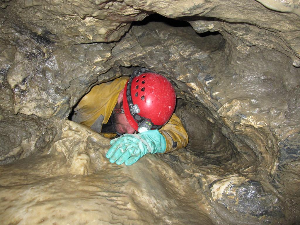 Resultado de imagem para Nettlebed Cave, New Zealand