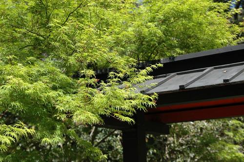 Japanese garden entrance descanso gardens daryl k flickr for Japanese garden entrance
