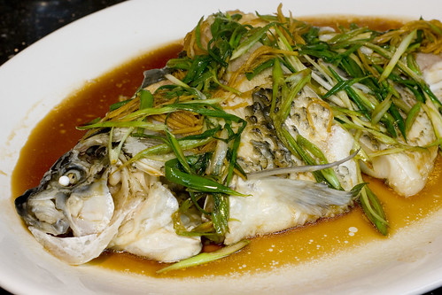 Steamed buffalo fish jessica and lon binder flickr for How to steam fish