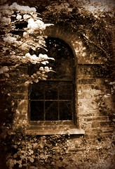 The Stable Window-sepia | by Athena's Pix