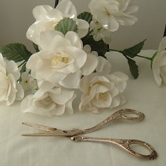 BEAUTIFUL antique silver grape scissors...1920's | by Im So Vintage
