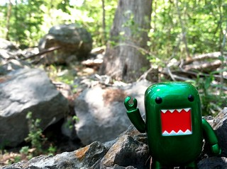 Domo in the woods! | by Sean Loyless