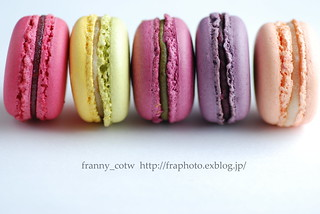 macaron! | by franny_cotw