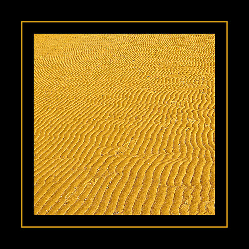 Sand Ripples | by Paco_MUC