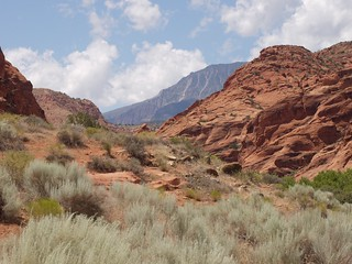 Red Cliffs Desert Reserve, Utah | by CarlBSr