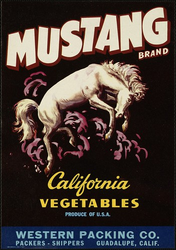Mustang Brand California Vegetables Produce Of U S A W